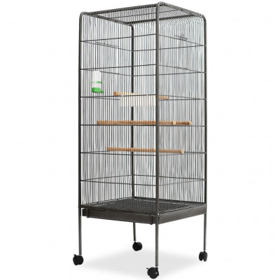 Cage à oiseaux Acier Noir 54 x 54 x 146 cm