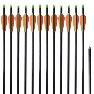"""12 flèches standard en fibre de verre 30"""" 0,8 cm pour arc à poulies"""