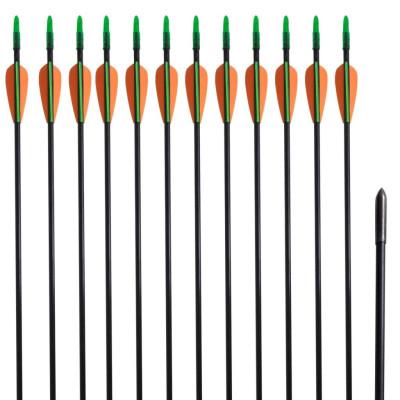 """12 flèches standard en fibre de verre 30"""" 0,6 cm pour arc classique"""